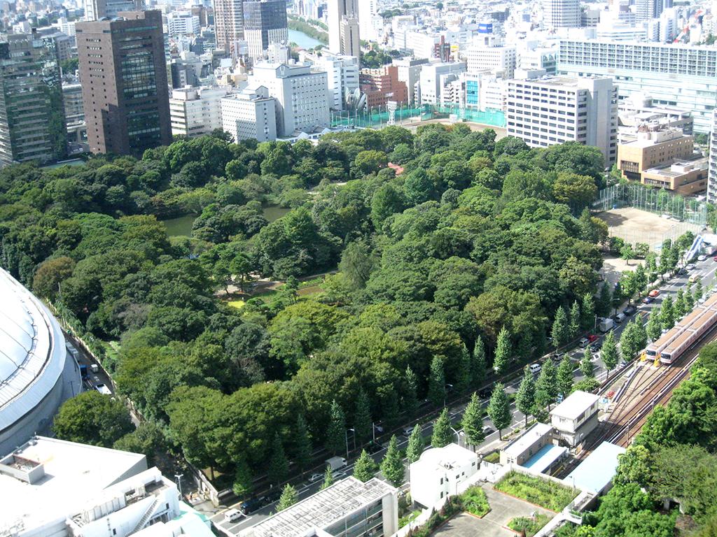 Jardines koishikawa korakuen visitar jap n for Jardin koishikawa korakuen